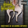 Abörted Hitler Cöck - Erections at an Animal Autopsy