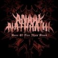 Anaal Nathrakh - More Of Fire Than Blood