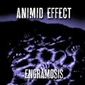Animid Effect - Engramosis