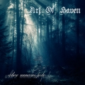 Art of Haven - Where memories fade