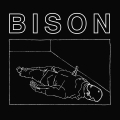 Bison B.C. - One Thousand Needles