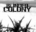 Blinded Colony - Promo 2005