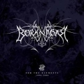 Borknagar - For The Elements (1996-2006)