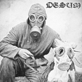 Desum - Weakened in War