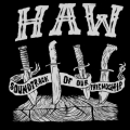 Haw - Soundtrack of Our Friendship