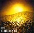 In The Woods - Omnio