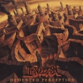 Invection - Demented Perception