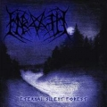 Nabaath - Eternal Silent Forest