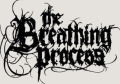 The_Breathing_Process