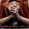 Burning Sun Fanzine - Seeds of Metal - Vol. II. (2017)